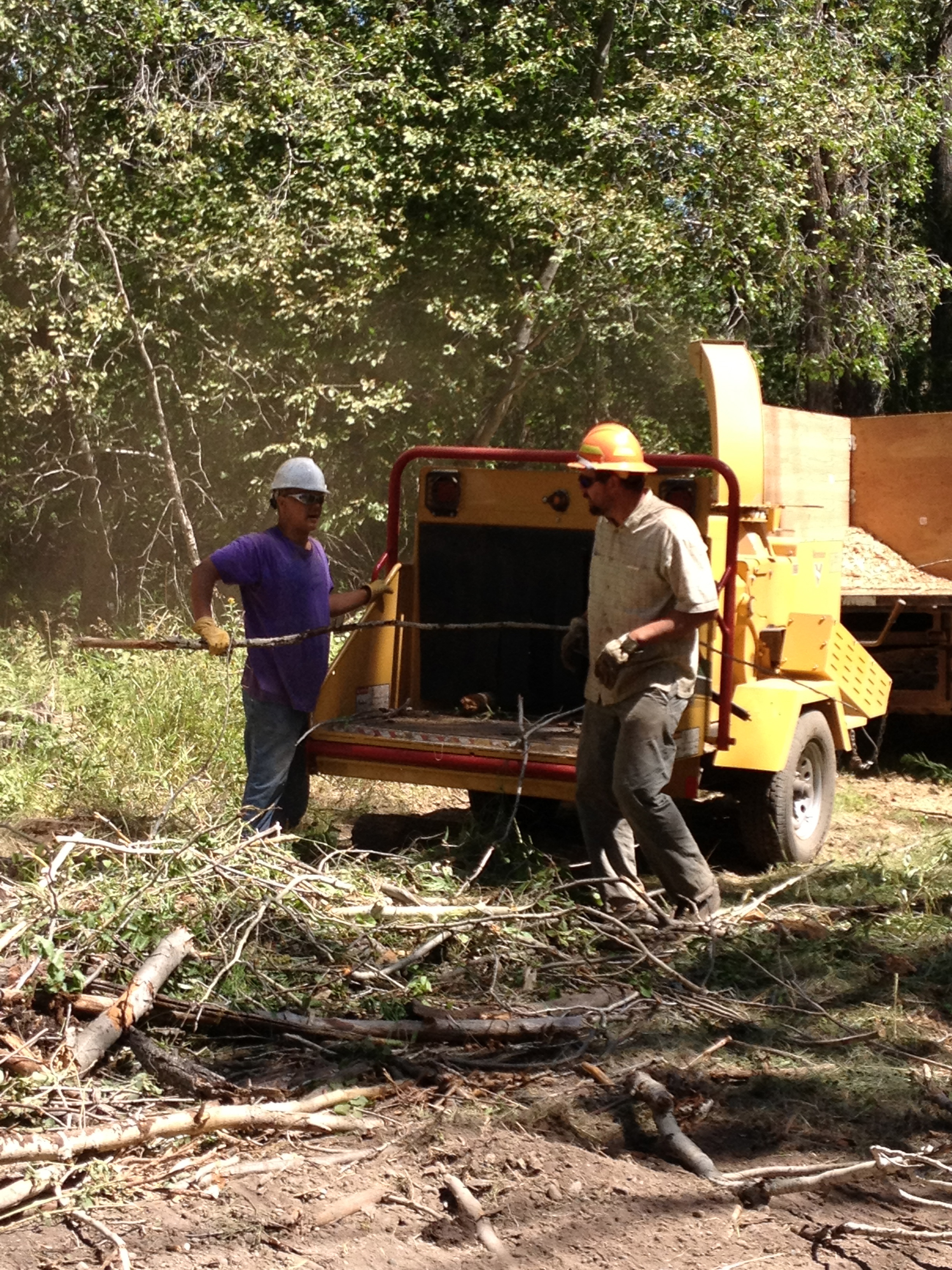 Fuels Reduction Projects | sawtoothwood